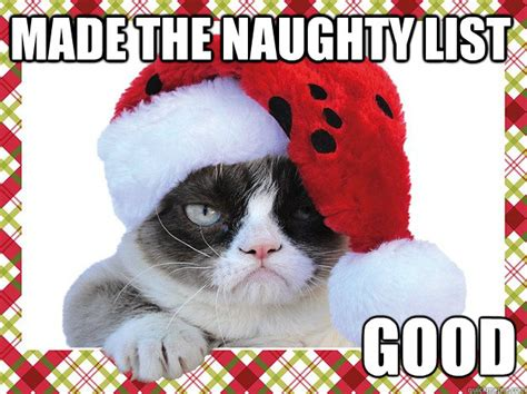 Cat Christmas Meme - grumpy cat memes christmas image memes at relatably com