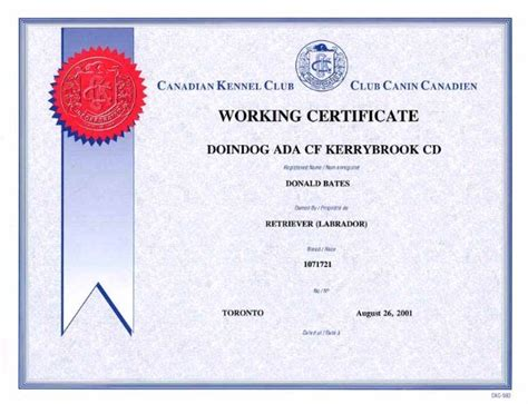 Doindogs Ada of Kerrybrook CD CDX WC WCX JH (Retired)