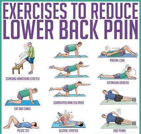 lower back exercises don t worry be healthy