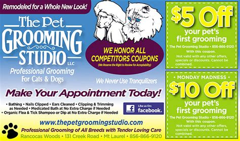 groupon grooming the pet grooming studio in mt laurel nj coupons