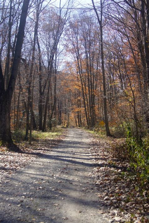 Kentuck Knob Cground by 17 Best Images About Ohiopyle State Park Pa Kentuck Knob