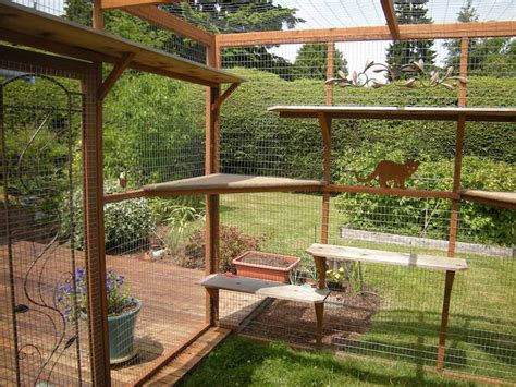 download plans to build your own modern micropolis tiny cat owners are building catio spaces for their favorite