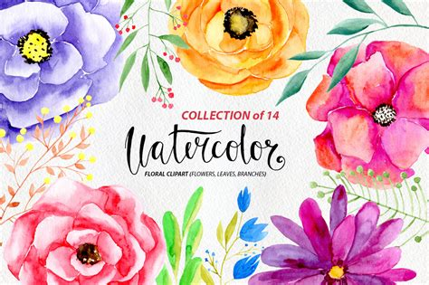 Example Of Creative Resume by Watercolor Flowers Png Clipart By Water Design Bundles