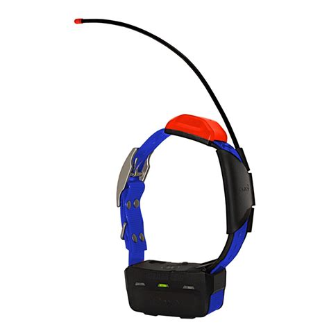 gps tracking collar garmin t5 additional gps tracking collar 249 99 free shipping us48