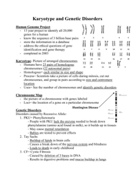 Section 14 2 Human Chromosomes Answers by Human Inheritance
