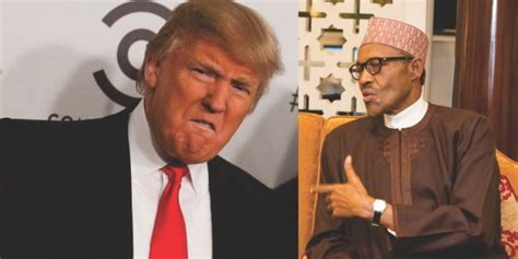 donald trump recent news afenifere chieftain adebanjo reveals why buhari is more