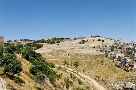 Olive Garden Montana by Related Keywords Suggestions For Mount Of Olives Israel