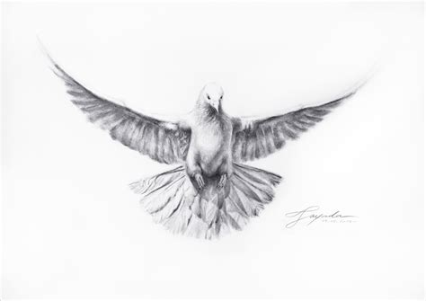 Quot Dove Totem Quot Drawing Academy Drawing Academy Dove Designs