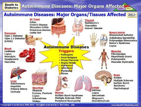 lupus can this autoimmune disease be treated naturally autoimmune diseases natural treatment strategies