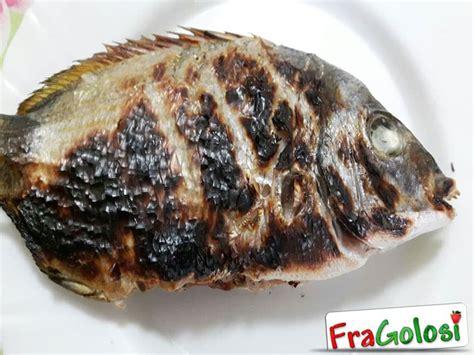 cucinare sarago sarago alla griglia ricetta di fragolosi it