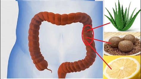 8 home remedies for colon cleansing last health news