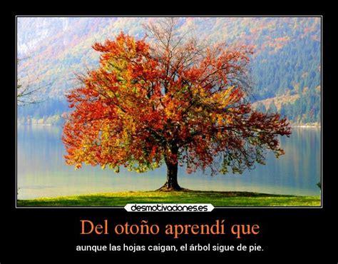 imagenes del otoño aprendi del oto 241 o aprend 237 que desmotivaciones