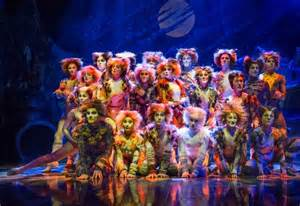 all singing all dancing cats the musical inside out style