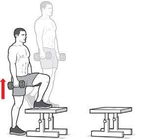 dumbbell bench step up step up bodybuilding wizard