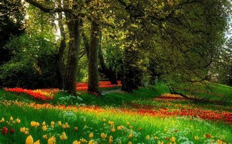 imagenes de paisajes hermosos para descargar impresionates paisajes bonitos para descargar gratis