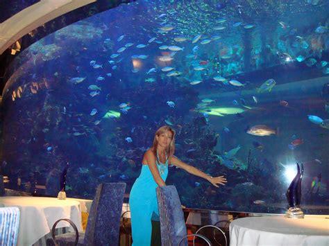 burj al arab underwater room excitement n net underwater restaurant in dubai al mahara