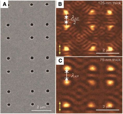 interference pattern gold optical and electrical mappings of surface plasmon cavity