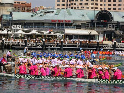 dragon boat racing geelong planettreasures what a week wordless wednesday