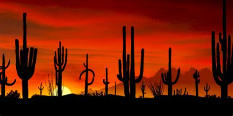desert gardens rv park florence az   exit guide