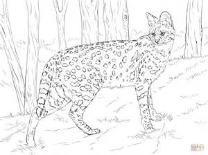 Coloring Book Pics Of Serval Cats Coloring Pages