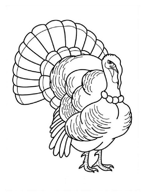 turkey bird coloring page turkeys coloring pages download and print turkeys