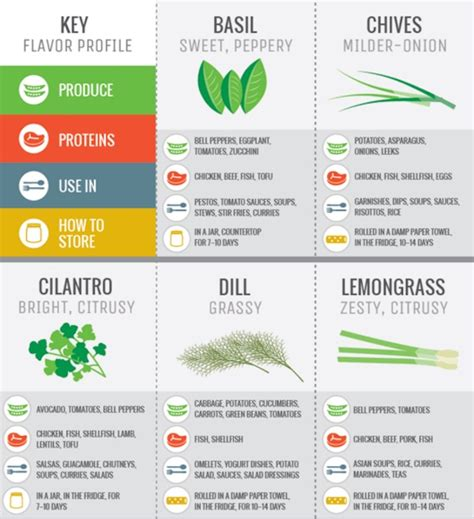 cooking infographic infographic guide to cooking and flavoring with fresh