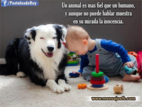 imagenes para reflexionar de animales imagenes con frases de animales mensajes para amor