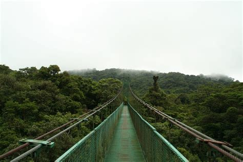 Canopy Reservations The 9 Most Canopy Walkways Around The World