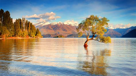 Postal Address Finder Nz 40 Hd New Zealand Wallpapers For Free The Land Of The Mystic