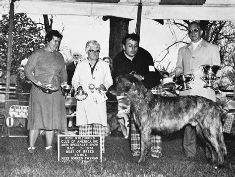 shih tzu club of america wolfhound club of america inc breeds picture