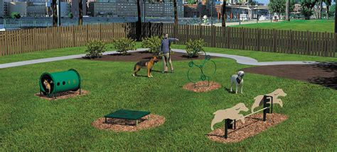 backyard agility course backyard agility course outdoor goods