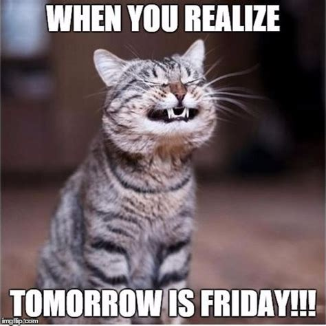 Tomorrow Is Friday Meme - tomorrow is friday imgflip
