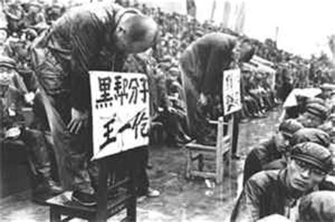 new year during cultural revolution history for dummies part 14 the mao years