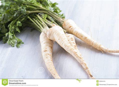 edible root vegetables vegetables royalty free stock image image 32934416