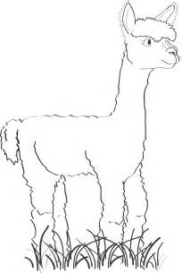 Other Ways To Help Our Alpacas  Poundsforpacas sketch template