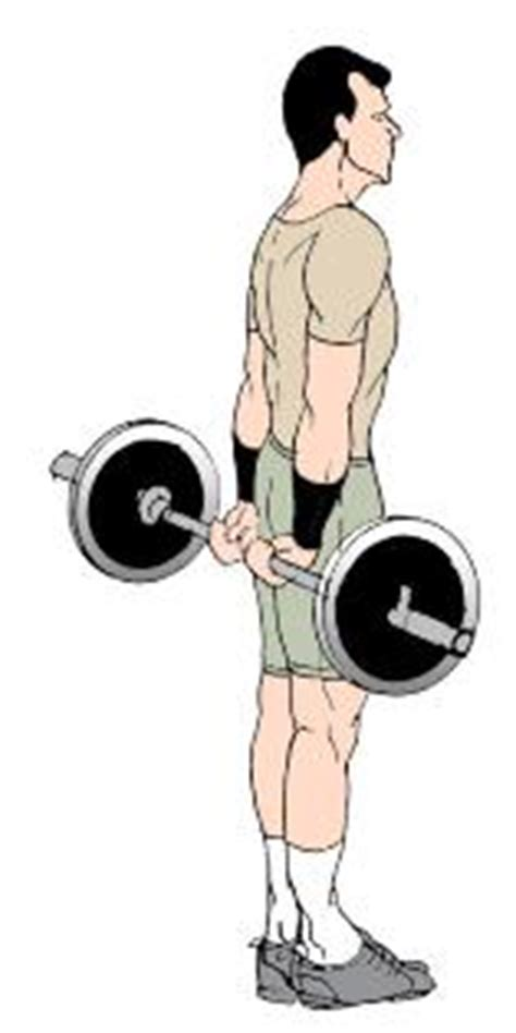 best arm exercises workouts best bicep and tricep