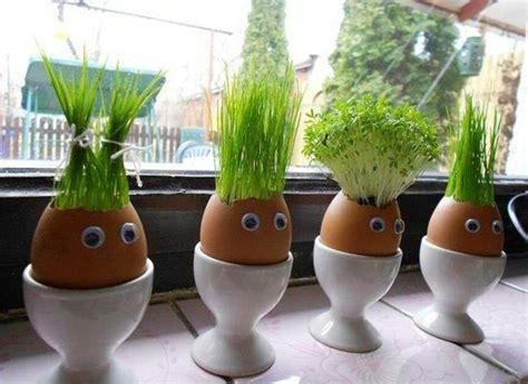 Eggshell Planters by Eggshell Planters Cheapskate Date Brigade