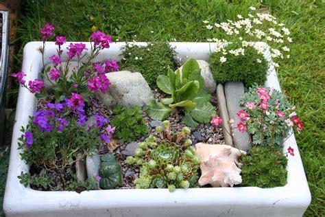 Alpine Garden by Alpine Garden In Belfast Sink What A Neat Idea For An