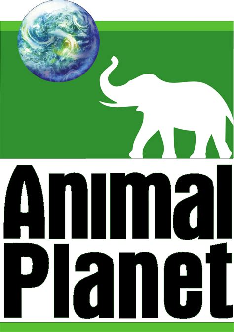 7 Reasons To Animal Planet by Canales En Vhs