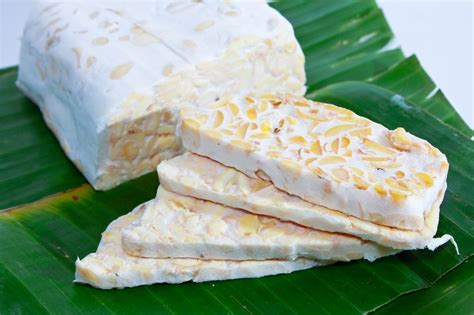 watchfit what is tempeh your guide to using it in vegan meals