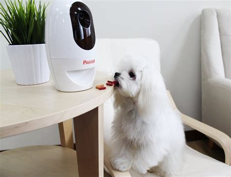 treat dispenser with pawbo wi fi pet and treat dispenser 187 gadget flow
