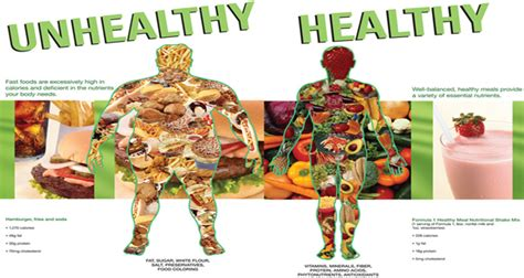 healthy fats vs unhealthy the gallery for gt unhealthy lifestyle clipart