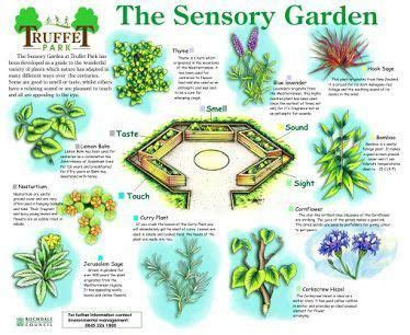 gardennursery  images sensory garden preschool