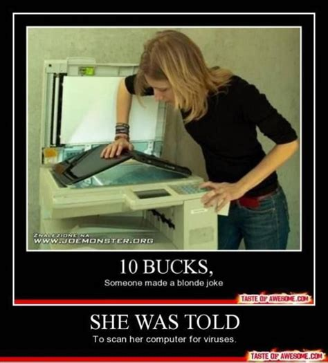 Blonde Moment Meme - 71 best blonde jokes images on pinterest ha ha funny