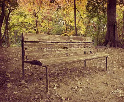 park bench art park bench photograph by steven michael