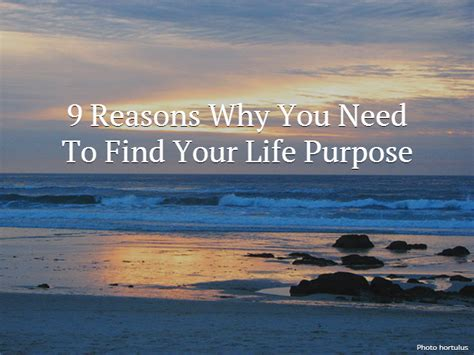 when does a s purpose come out 9 reasons why you need to find your purposepick the brain motivation and self