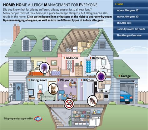 house allergies house allergies 28 images 10 tips to make your house eczema and allergy friendly