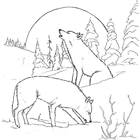 coloring pages with wolves coloring pages of wolves