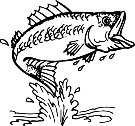 cathing bass fish coloring pages cathing bass fish