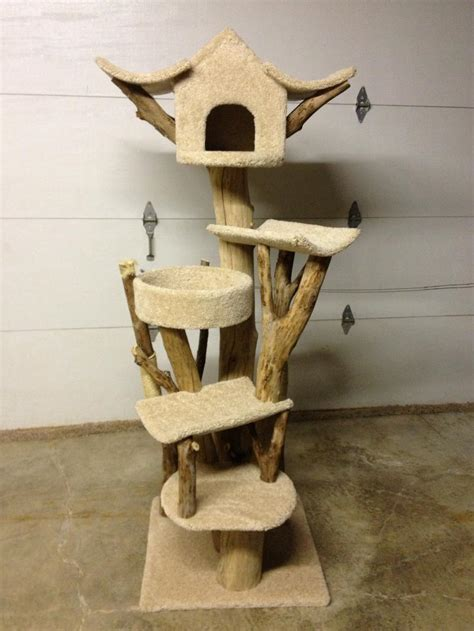 Handmade Cat Trees - the prr fect place the woodstock independent